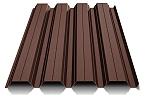 Maro ciocolatiu